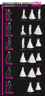 shape gown